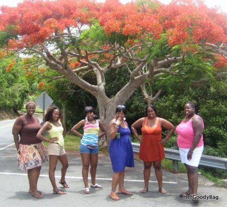 pH under the Flamboyant Tree (Keyona, Me, Shara, Jill, Kathleen, Erica,